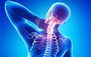 Лечение еловыми шишками остеохондроза