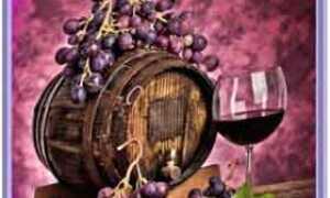 Лечение бронхита вином