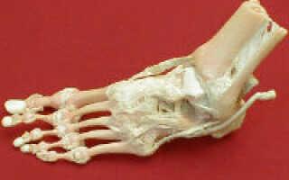 Суставы стопы анатомия заболевания и лечение