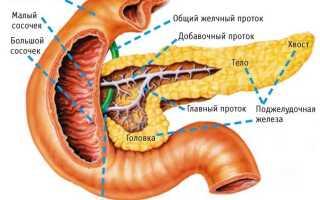 Плохая работа поджелудочной железы симптомы и лечение