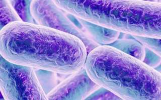 Воспаление дыхательных путей симптомы и лечение