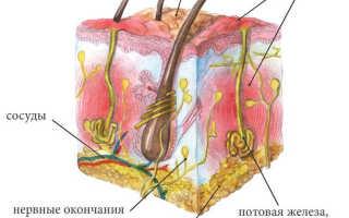 Чем лечить гидраденит