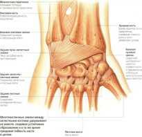 Болит лучезапястный сустав как лечить
