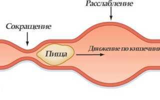 Плохая моторика кишечника симптомы и лечение