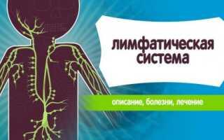 Болезни лимфатической системы человека симптомы лечение