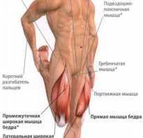 Боль мышц бедра причины лечение