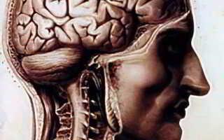 Заболевания нервной системы симптомы и лечение