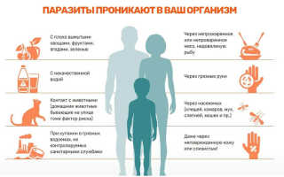Откуда берутся глисты у детей и как лечить
