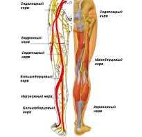 Невралгия стопы симптомы и лечение