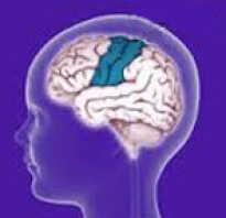 Роландическая эпилепсия у детей лечение