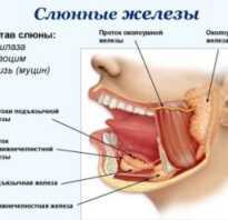 Лечение слюнной железы